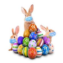 Easter Bunnies Or Easter Rabbi...