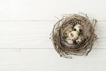 Nest With Quail Eggs On A Rust...