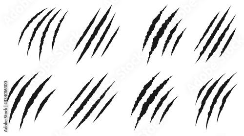 Obraz na płótnie animal Claw scratches mark set