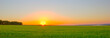 Rural landscape. Beautiful sunset over a rapeseed field. Agriculture. Summer background. Panoramic banner.