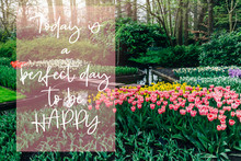 Today Is A Perfect Day To Be Happy Phrase In The Frame. Nice Curvy Path Between Flowerbeds Of Blossoming Tulips During Spring. One Of The World's Largest Flower Gardens In Lisse, The Netherlands.