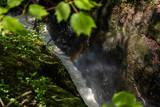 Fototapeta Tęcza - wodospad