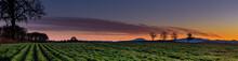Oregon Sunset Over Mary's Peak...