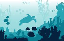 Turtle Fish Marine Animals Coral Reef Underwater Sea Ocean Illustration
