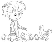 Little Girl Farmer Standing With A Bucket Of Feed Grain And Feeding A Merry Brood Of Small Chicks And A Cute Hen On A Chicken Farm, Black And White Vector Cartoon Illustration For A Coloring Book Page