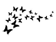 Silhouette Butterflies Design ...