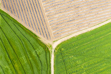An Aerial View Of Huge Agricul...