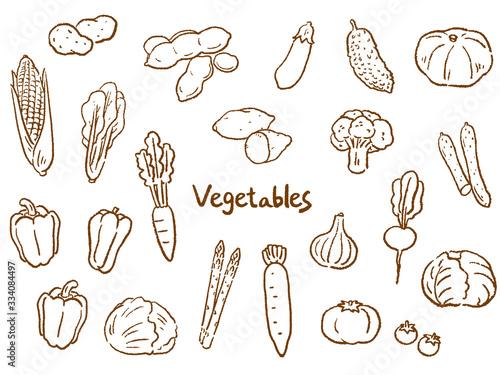 Photo 野菜 手描き 線画 セット イラスト