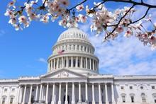 Washington DC - US National Ca...