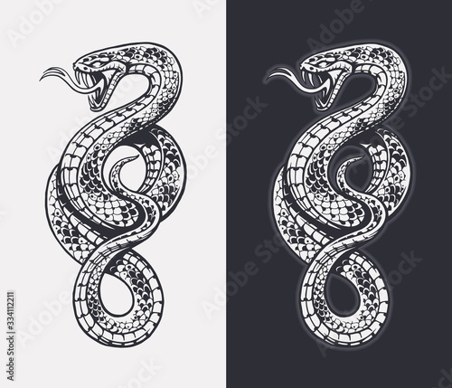 Snake Vector Isolated Wall mural