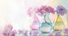 Bouquets Of Beautiful Hydrangea In Colorful Glass Vases Over Bokeh Background. Home Interior Decor.