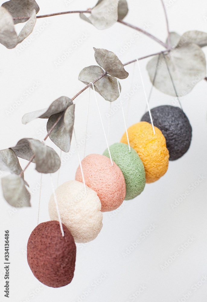 Fototapeta natural sponge konjac for face and body care, cleansing sponge hanging on a sprig of eucalyptus, different colors