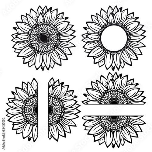 Obraz na plátně Sunflower