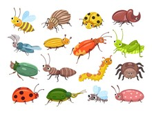 Cartoon Beetle. Funny Smiling Bugs, Children Beetles. Happy Insects, Ladybug And Caterpillar, Larva. Wild Forest World Vector Illustration. Beetle And Ladybug, Smile Insect And Bug