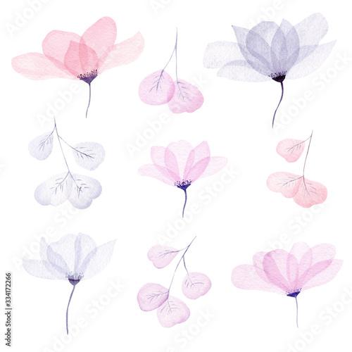 Photo Watercolor floral illustration set