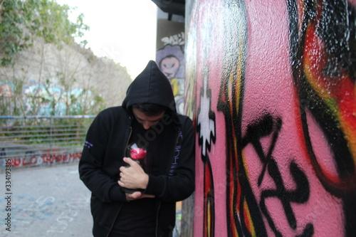Fototapeta il custode della rosa