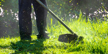 Lawn Care Maintenance. Profess...