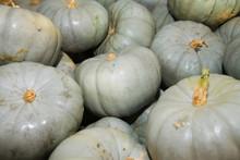 Fresh Grey Pumpkins As A Background