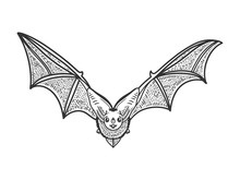 Flying Bat Sketch Engraving Vector Illustration. T-shirt Apparel Print Design. Scratch Board Imitation. Black And White Hand Drawn Image.