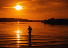 Silhouette Of A Boy Walking In Ocean At Sunset, Bedford, Halifax, Nova Scotia, Canada