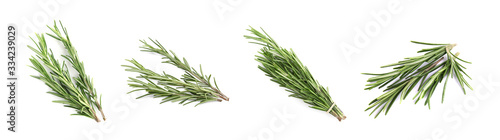 Tablou Canvas Set of fresh green rosemary on white background