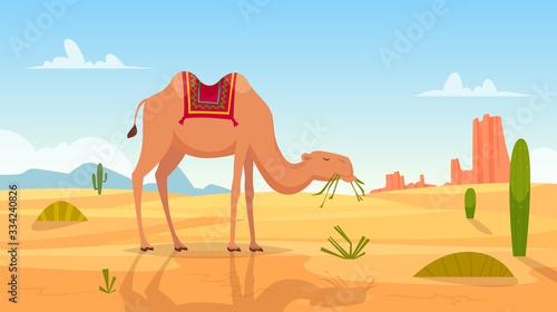 Desert background Fotobehang