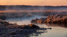 Rzeka Narew. Słoneczny Porane...