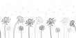Seamless dandelion pattern, vector seamless background with hand drawn plants and seeds