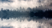 Abstract Image With Foggy Fore...