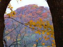 Breck's Knob View, Shallenberger Nature Preserve, Lancaster, Ohio