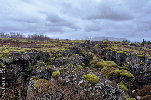 Photo The Tektonic plates split in Iceland on a cloudy and drizzly day