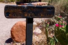 Phantom Ranch Trail Markers