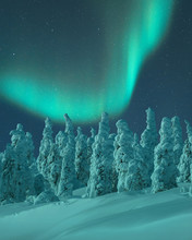 Aurora Borealis Over Snow Cove...