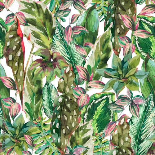 tropikalne-rosliny-i-liscie