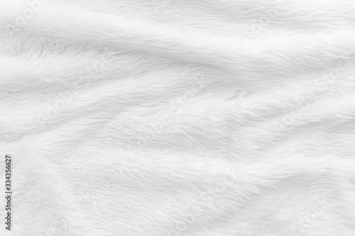 Cuadros en Lienzo Fur background with white soft fluffy furry texture hair cloth of sheepskin for