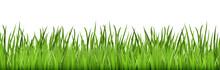 Seamless Floral Grass Panorama...