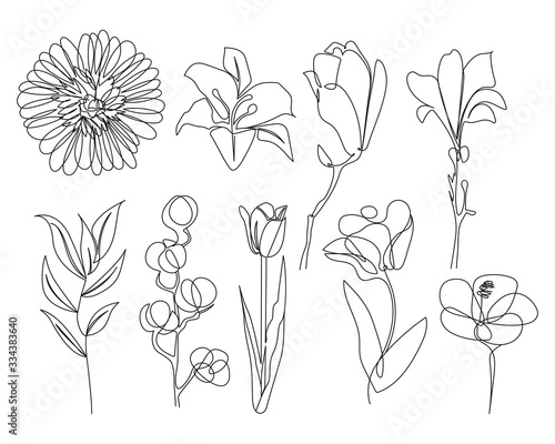 Continuous Line Drawing Set Of Plants Black and White Sketch of Flowers Isolated on White Background. Flowers One Line Illustration. Vector EPS 10. - 334383640