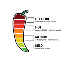 Chilli Pepper Hotness Level Vector Graphic Design Illustration