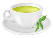 A Cup Of Green Tea. Vector Ill...