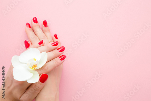 Beautiful woman hands with red nails on light pink table background. Pastel color. White orchid flower. Closeup. Manicure  pedicure beauty salon concept. Empty place for text or logo. Top down view.