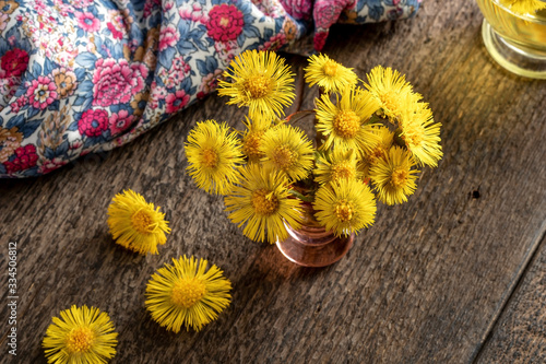 Fresh coltsfoot flowers in a vase Tablou Canvas