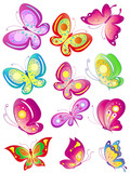 butterfly493