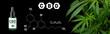 Leinwanddruck Bild - cannabis marijuana plan on black background with image of THC and CBD formula