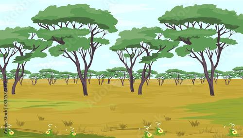 Foto savannah illustration