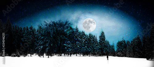 night landscape with trees and full moon Fototapet