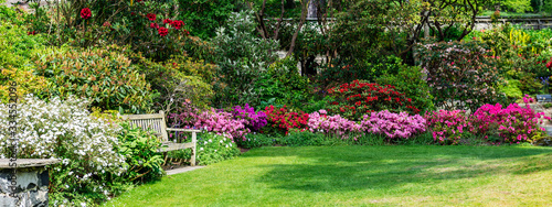 Fotografía Beautiful Garden with blooming trees during spring time, Wales, , banner size
