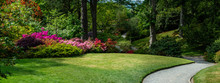 Beautiful Garden With Blooming Trees During Spring Time, Wales, , Banner Size