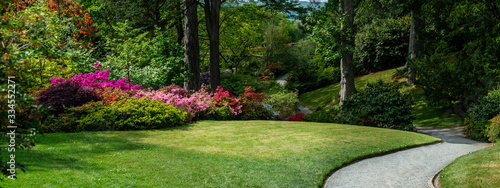 Obraz Beautiful Garden with blooming trees during spring time, Wales, , banner size - fototapety do salonu