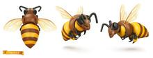 Bee, Bumblebee. 3d Cartoon Vector Icon Set. Plasticine Art Illustration