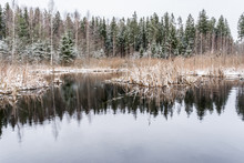 The Nature Around The Lake Aft...